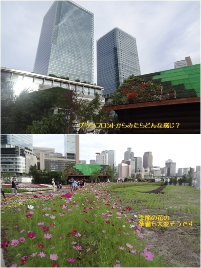 うめきたガーデン & 高橋真梨子コンサートの後 & 断捨離_a0084343_16075374.jpg