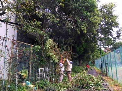2016年10月月例会「肥料の準備」樹木と草花の整理_a0094959_23301094.jpg