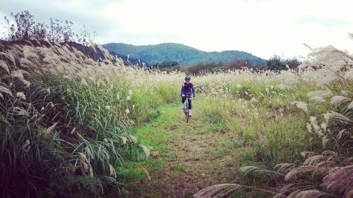 10月8日 開催「voyAge touring\'the harvest ride\' 111」の日記_c0351373_11514715.jpg