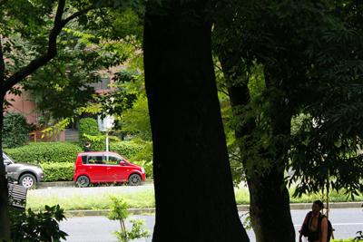 東京タワー横の公園でブライス外撮り_a0275527_21535850.jpg