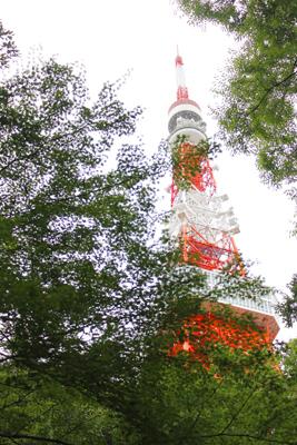 東京タワー横の公園でブライス外撮り_a0275527_21542038.jpg