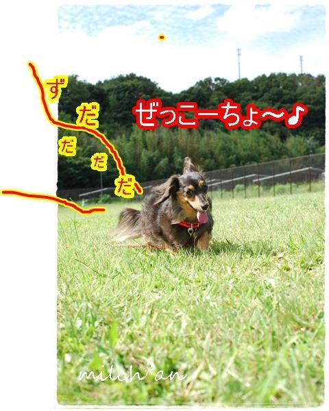 b0115642_18382157.jpg