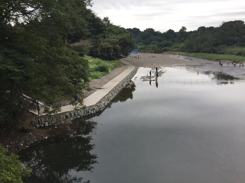 高麗川沿いの遊歩道_c0331145_17321519.jpg