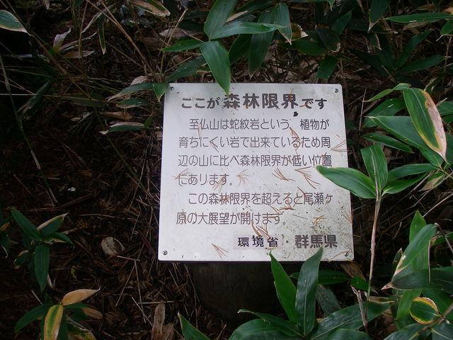 尾瀬、至仏山登山_a0074069_15412864.jpg