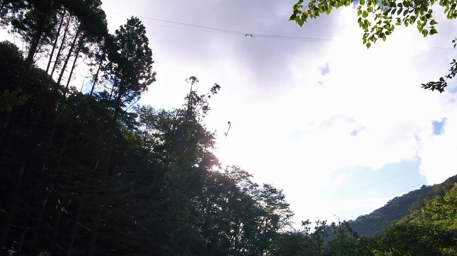 原木市場・龍神村_b0061387_13245259.jpg