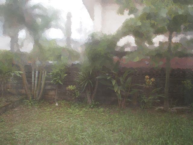 台風後の庭を眺めて_b0292900_18183761.jpg