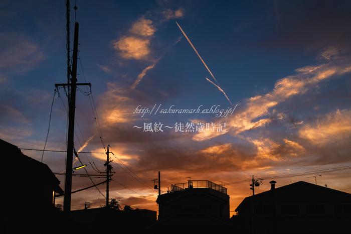秋空落日。_f0235723_1539895.jpg