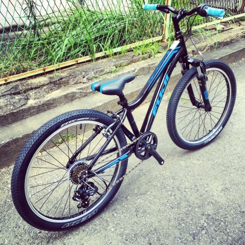 FUJI フジ「DYNAMITE 24 Sports 20」キッズバイク おしゃれ自転車 おしゃれ子供車 リピトキッズ 子供車 ダイナマイト_b0212032_14435643.jpg