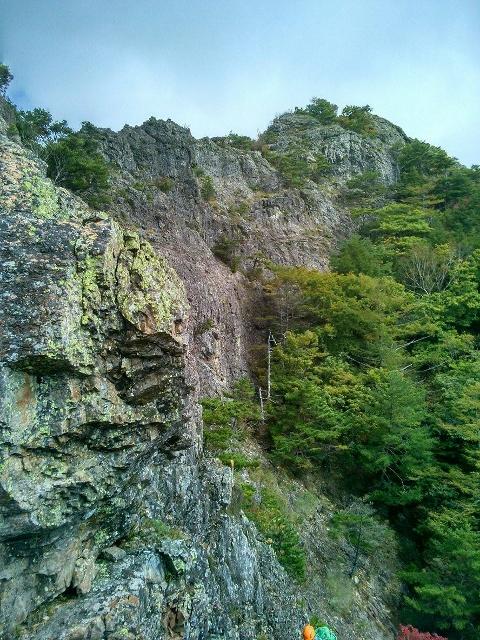 男山ダイレクト_d0107938_1014652.jpg