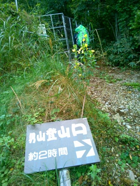 男山ダイレクト_d0107938_9543467.jpg
