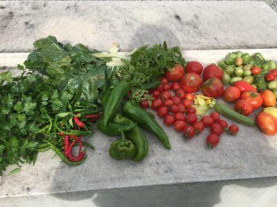 夏野菜の整理_d0136540_03191242.jpg