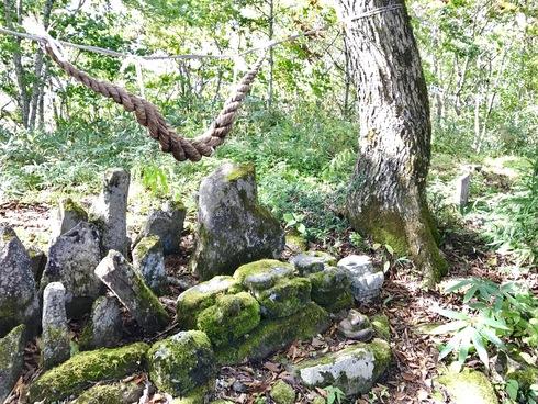 森林の適切な管理の重要性を改めて〜3年前の豪雨被害から@矢巾町南昌山〜_b0199244_9314046.jpg