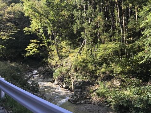 森林の適切な管理の重要性を改めて〜3年前の豪雨被害から@矢巾町南昌山〜_b0199244_931417.jpg