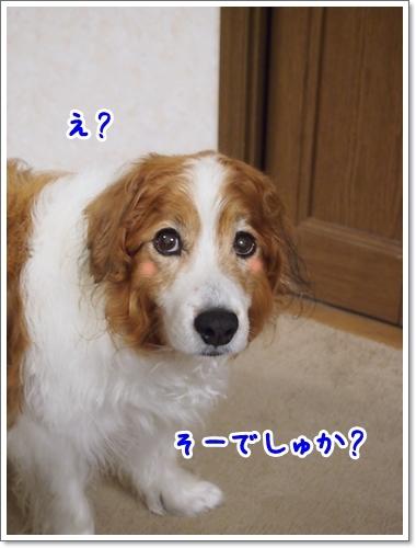 d0013149_00201273.jpg