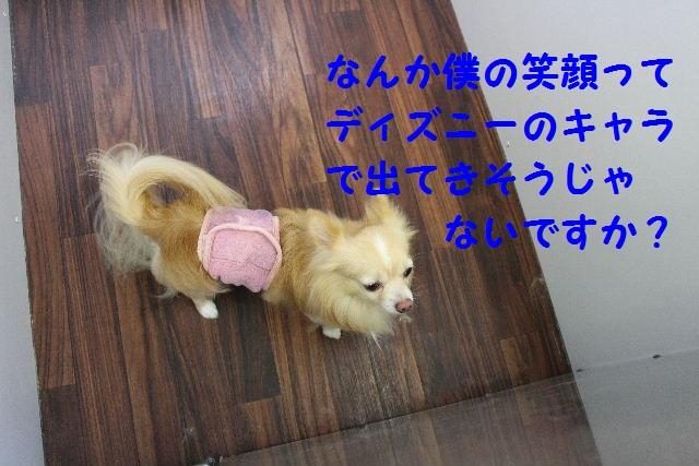 b0130018_7351271.jpg