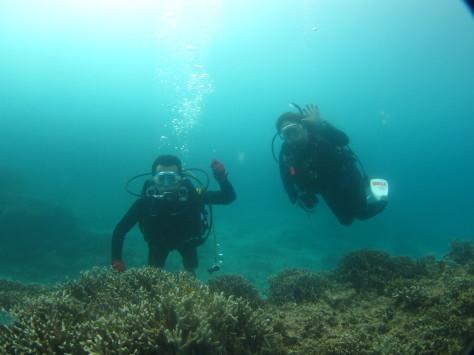 10月12日海が荒れる前にダイビング_c0070933_21193698.jpg