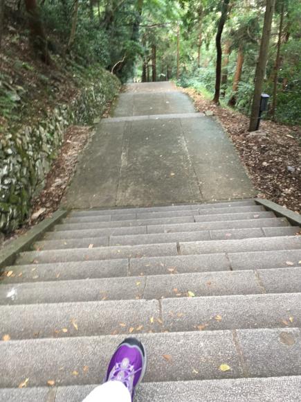 琴平山(金毘羅山)_d0339676_15032442.jpg