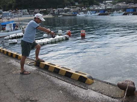 ★イカでシマチン釣りの魚市場食堂★_e0147297_135226100.jpg
