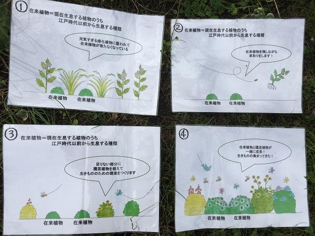 芝公園・10月の 生物多様性ガーデンへ _c0124100_11263347.jpg