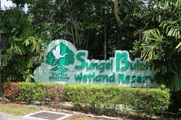 シンガポールで大自然に抱かれる1日。_e0319202_10164057.jpg