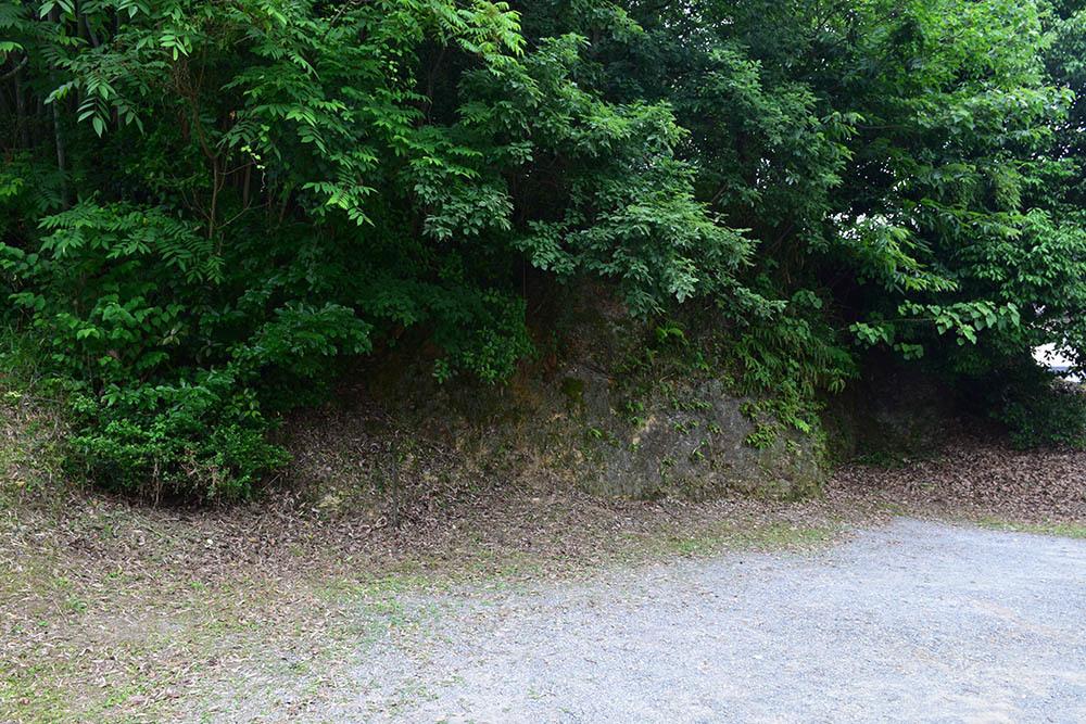 後藤又兵衛基次ゆかりの地をたずねて。 その1 「南山田城跡」_e0158128_21264122.jpg