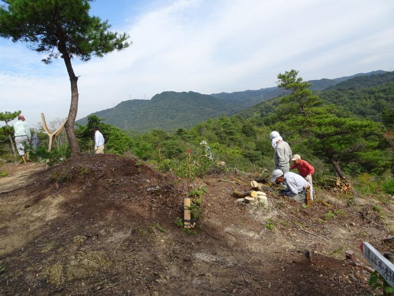 アカマツ植樹用穴掘り・・・孝子の森  by  (TATE-misaki)_c0108460_21042039.jpg