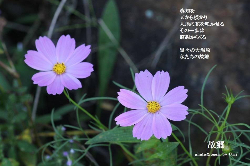 f0351844_19104400.jpg