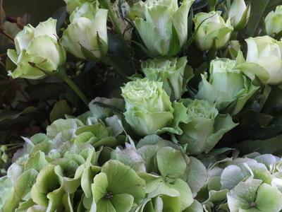 オークリーフ(バラと秋色紫陽花の花束)_f0049672_11381374.jpg