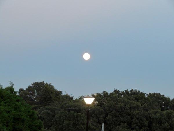 夕日とほぼ丸い月_e0133780_18253064.jpg