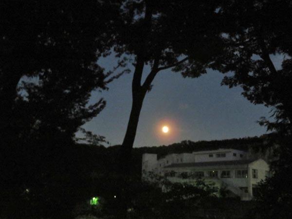 夕日とほぼ丸い月_e0133780_18265780.jpg