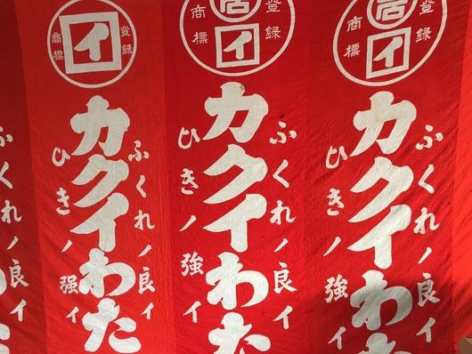 小野川合戦祭り よいやかがり火_c0256701_1372654.jpg