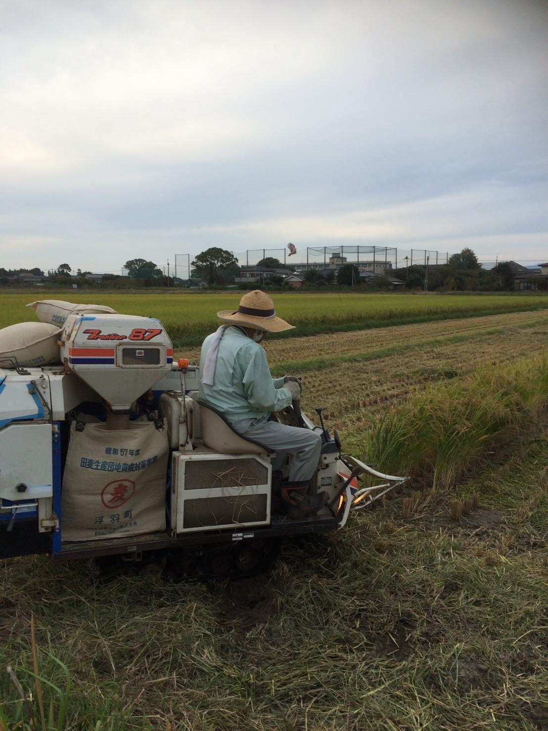 うきは市で、稲刈りと空手の稽古!いま、帰宅しました。_a0130305_21493489.jpg