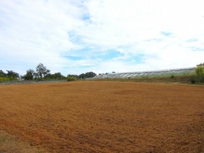 第2圃場 土作り終了_d0336530_20584700.jpg