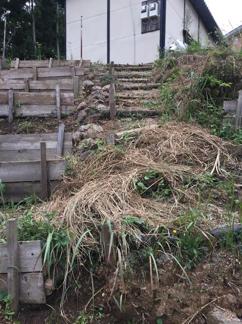 庭の階段_c0331145_0563714.jpg
