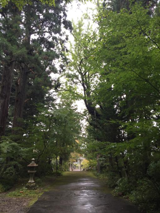 おみくじ繋がりで二所山田神社☆_f0183846_19424703.jpg
