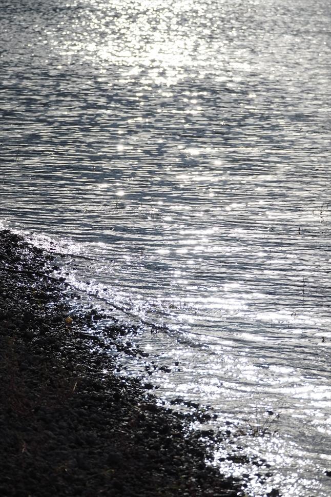 【レポート】本栖湖キャンプ場① ~カヌーと何もしないキャンプ 前編_b0008655_16404111.jpg