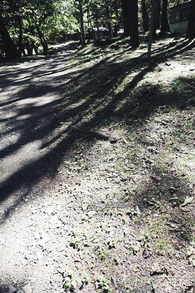 【レポート】本栖湖キャンプ場① ~カヌーと何もしないキャンプ 前編_b0008655_16593995.jpg