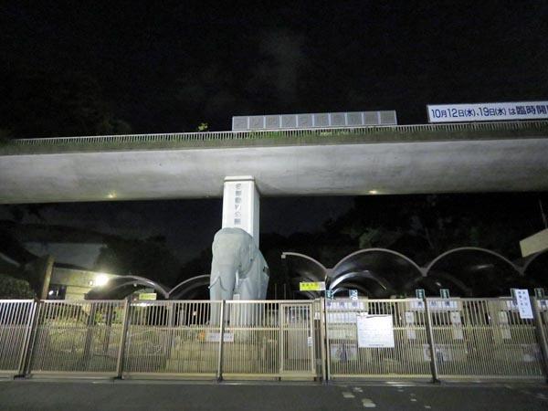 日本の満月_e0133780_21514245.jpg