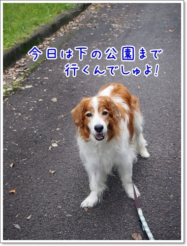 d0013149_00195437.jpg