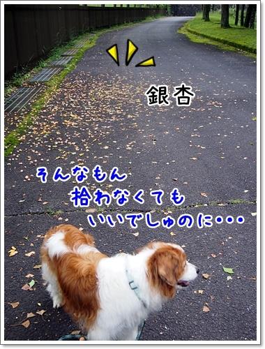 d0013149_00210444.jpg