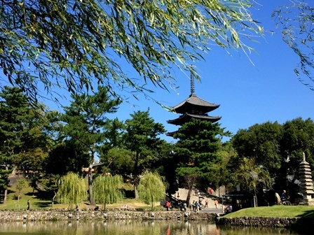 あおによし  古都奈良へ(羊皮紙展へ)_b0165872_23042922.jpg