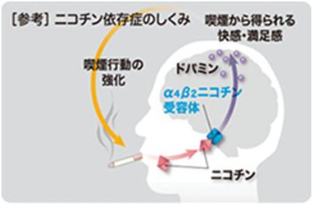 タバコラム78.禁煙の日にひとこと(60)~ニコチン依存症は治療できます!~_d0128520_1825413.jpg