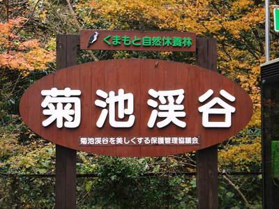 『陽だまり弁当』が届きました!熊本県菊池市のNPO法人「きらり水源村」の 心温まる取り組みを紹介! _a0254656_1852510.jpg