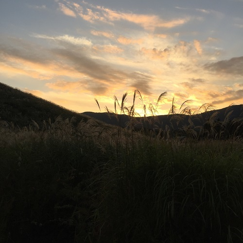 すすき野原の夕景_a0292060_13464930.jpg