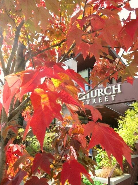 紅葉の始まった旧軽でランチ * La montagnon/ラ・モンタニョン_f0236260_21120534.jpg