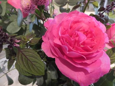 オークリーフ花の教室(落合㋲さんの作品)_f0049672_1817446.jpg