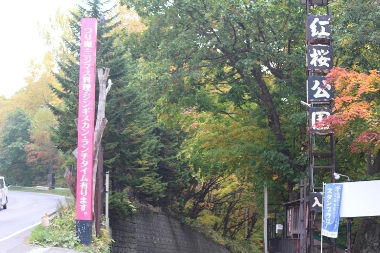 「紅桜公園」 行ってきました。_f0362073_03445476.jpg
