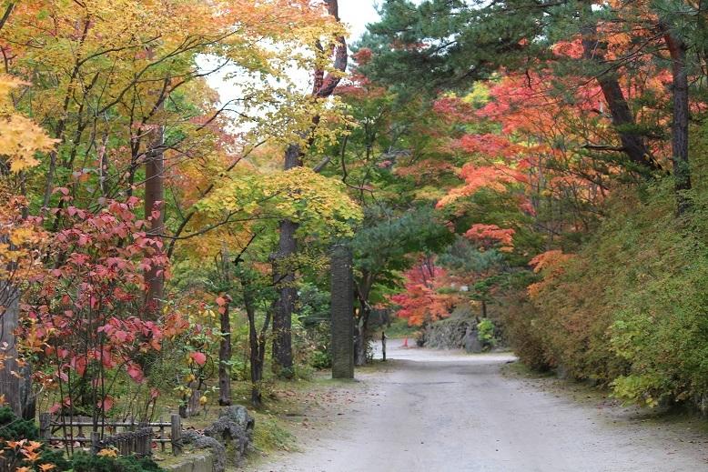 「紅桜公園」 行ってきました。_f0362073_04325180.jpg