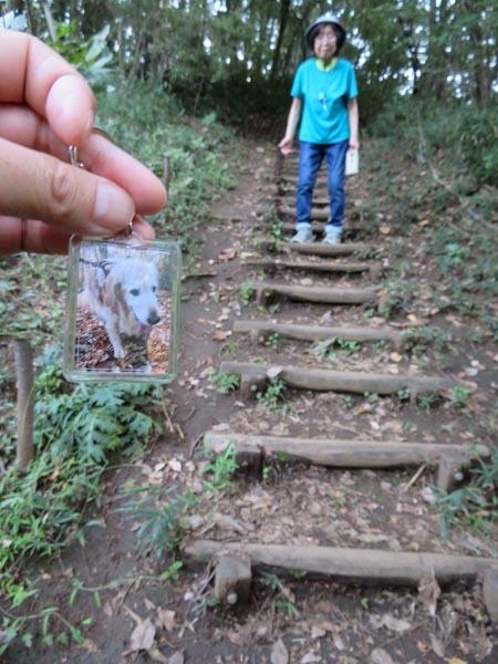 ちょうど一年、長池公園_e0133780_20530036.jpg
