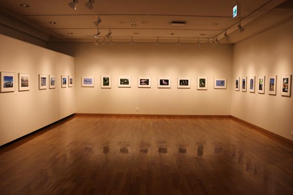 東川町文化ギャラリー展示のお知らせ_b0187229_19531233.jpg